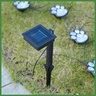 Solar-Powered Paw Print Lights
