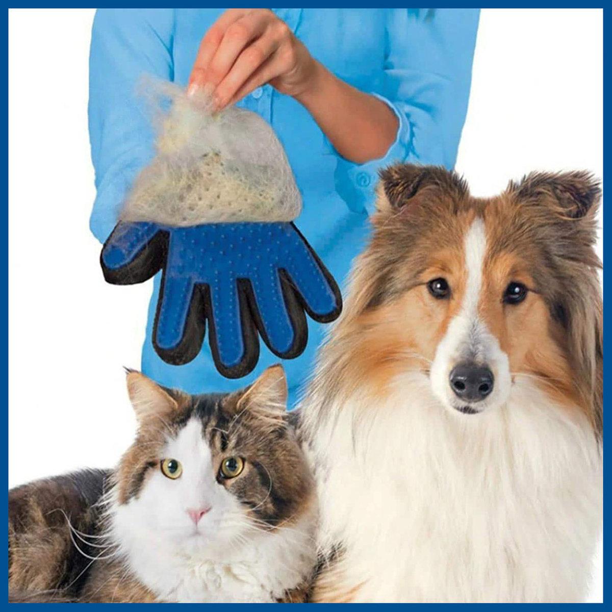 Shedding Fur Remover Glove