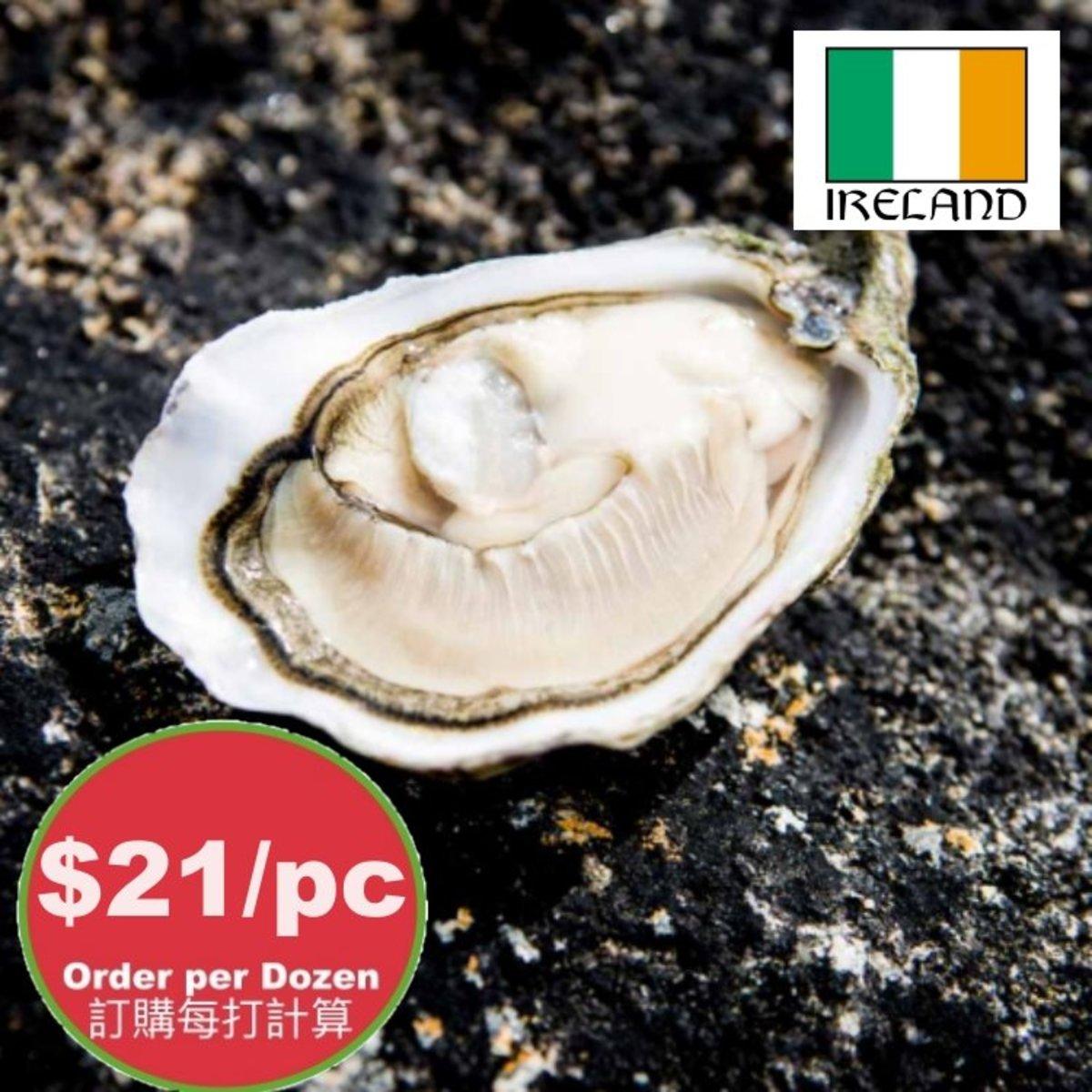 #1 愛爾蘭活蠔 - 大碼,每隻重110-130g。售價是以12隻計。