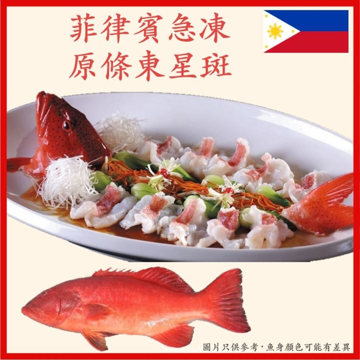 Philippines Frozen Coral Trout, 200-300g/pc