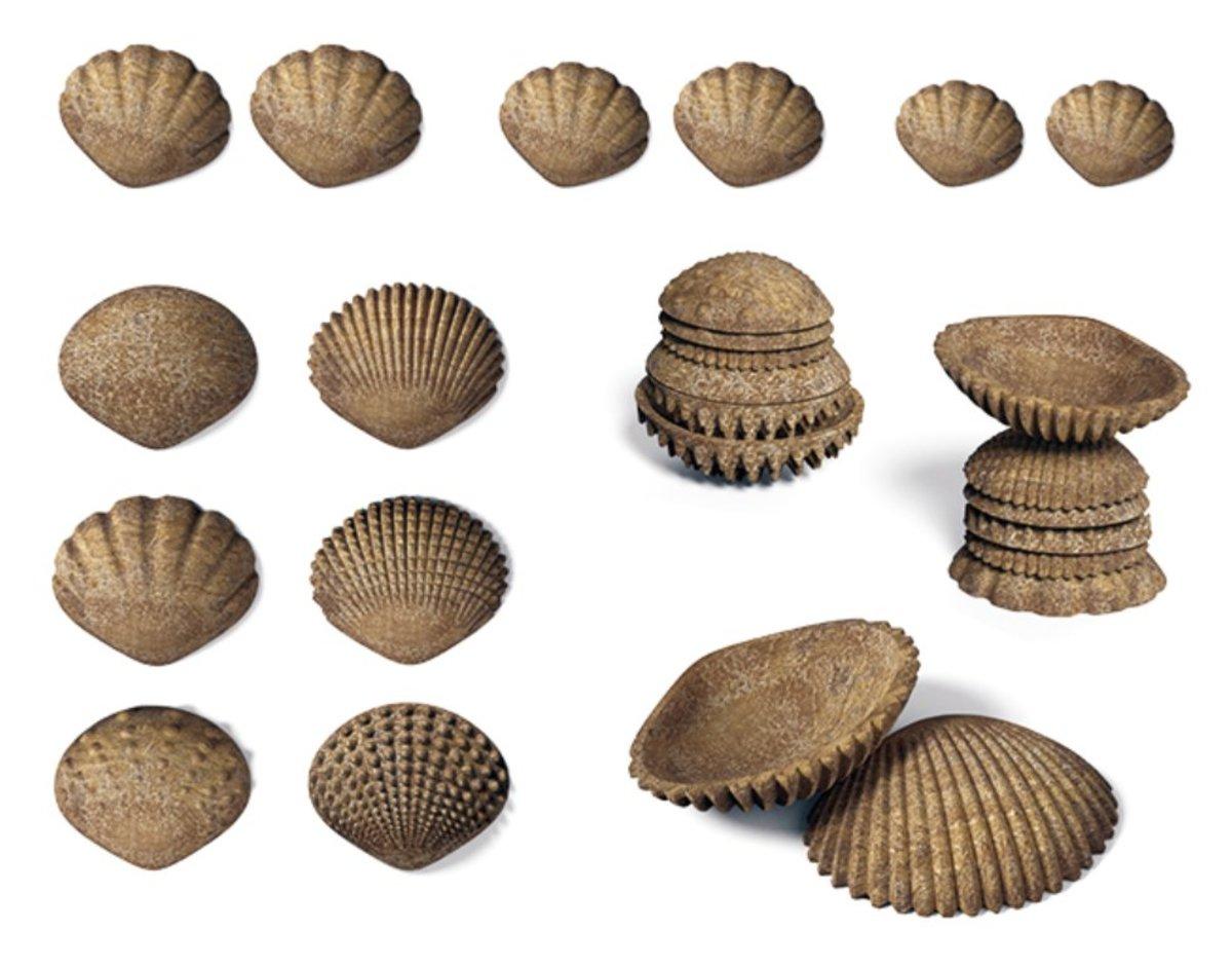 FPC Environmental friendly Tactile Shells