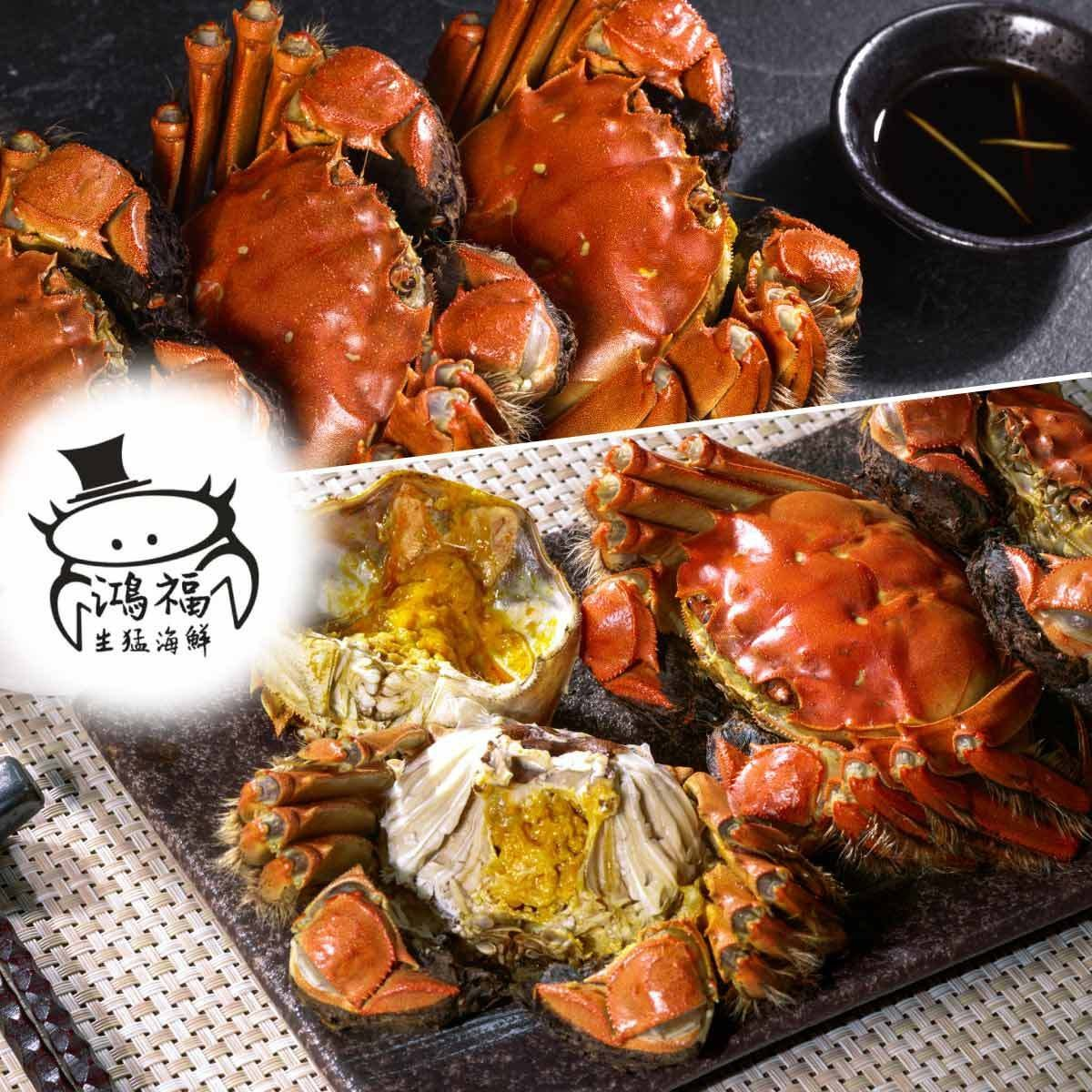 10 Units (Female, Extra Large, approx. 4.7 - 5.2 taels) - Chinese Hairy Crab【Merchant Delivery Only】