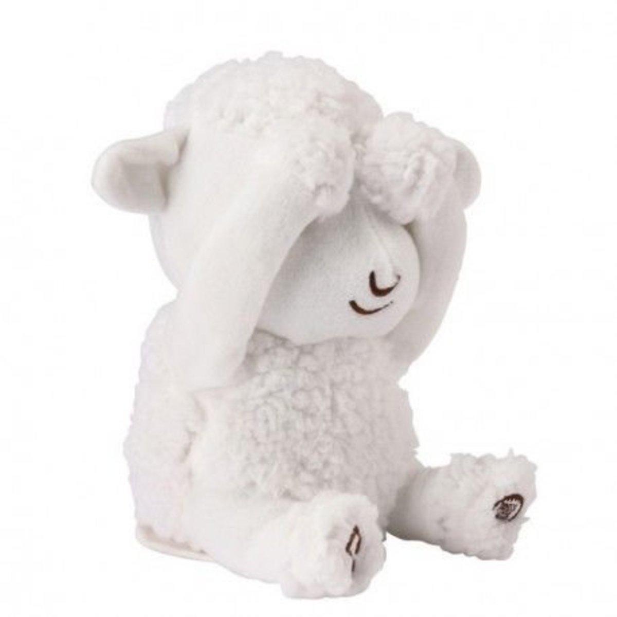 PEEK-A-BOO The Sheep