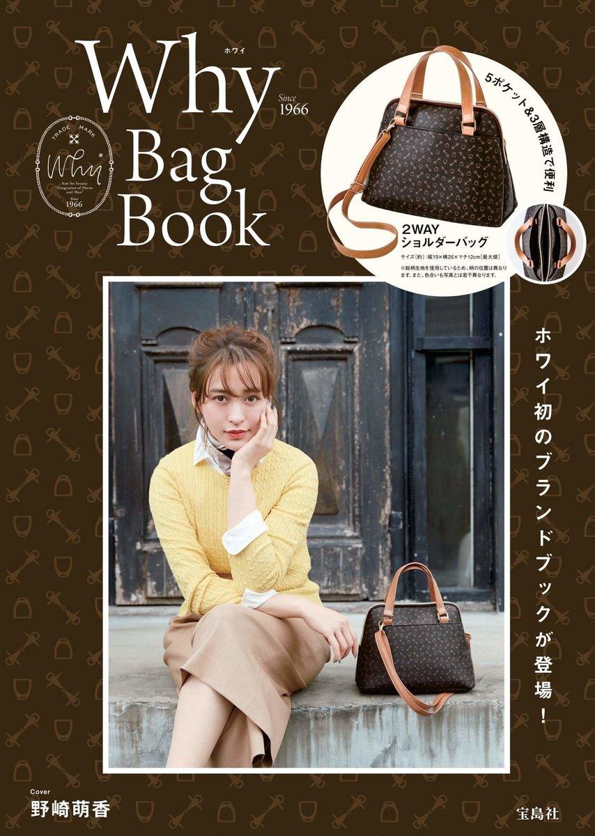 Why Bag Book [With Shoulder Bag]
