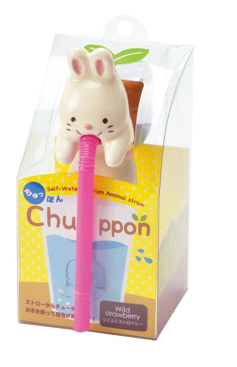 Chuppon - Rabbit (Wild Strewberry)
