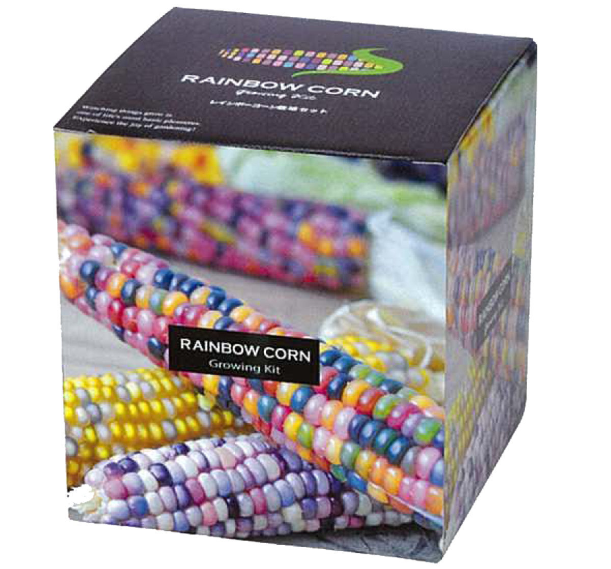 GD-6555 Rainbow Corn