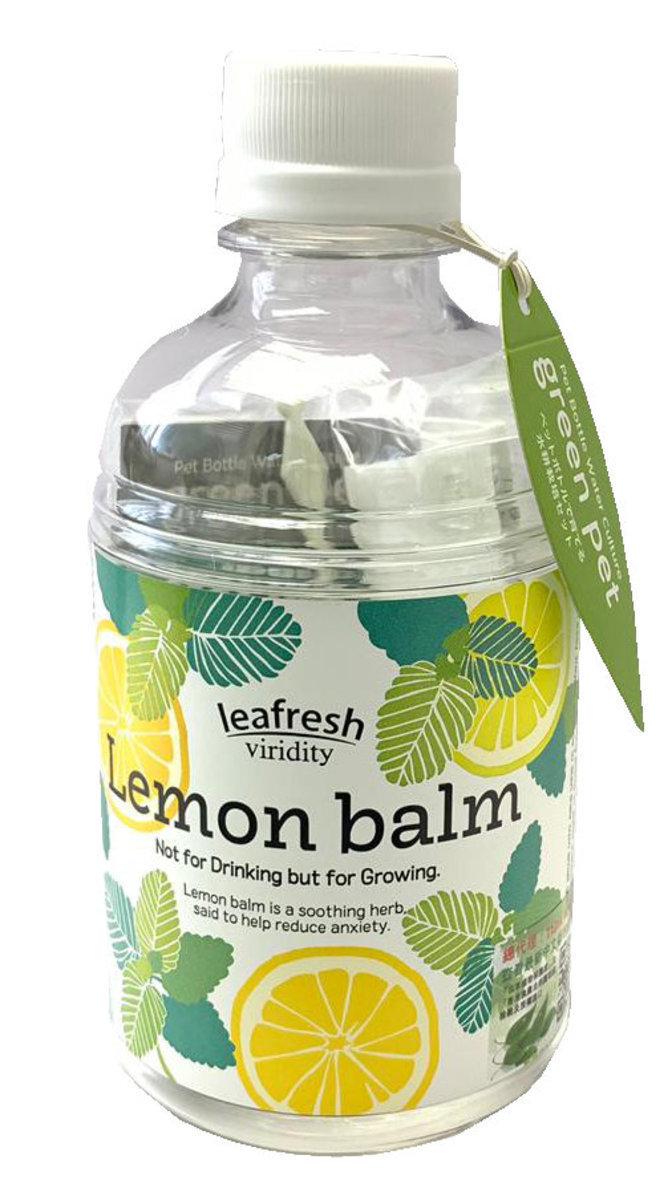 Green Pet Herb - Lemon Balm (GD-863-03)