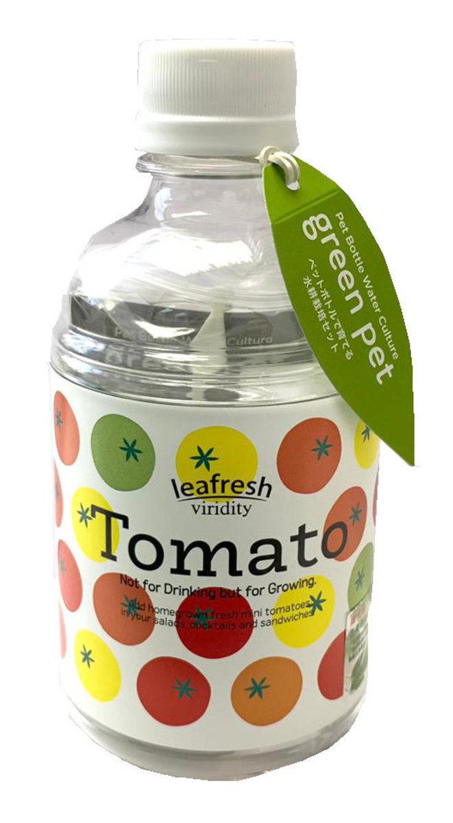 Green Pet Herb - Mini Tomato (GD-863-06)
