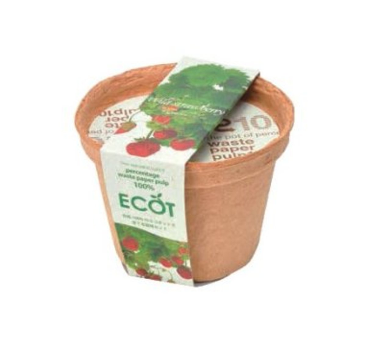 GD-410-05 ECOT small - Strawberry