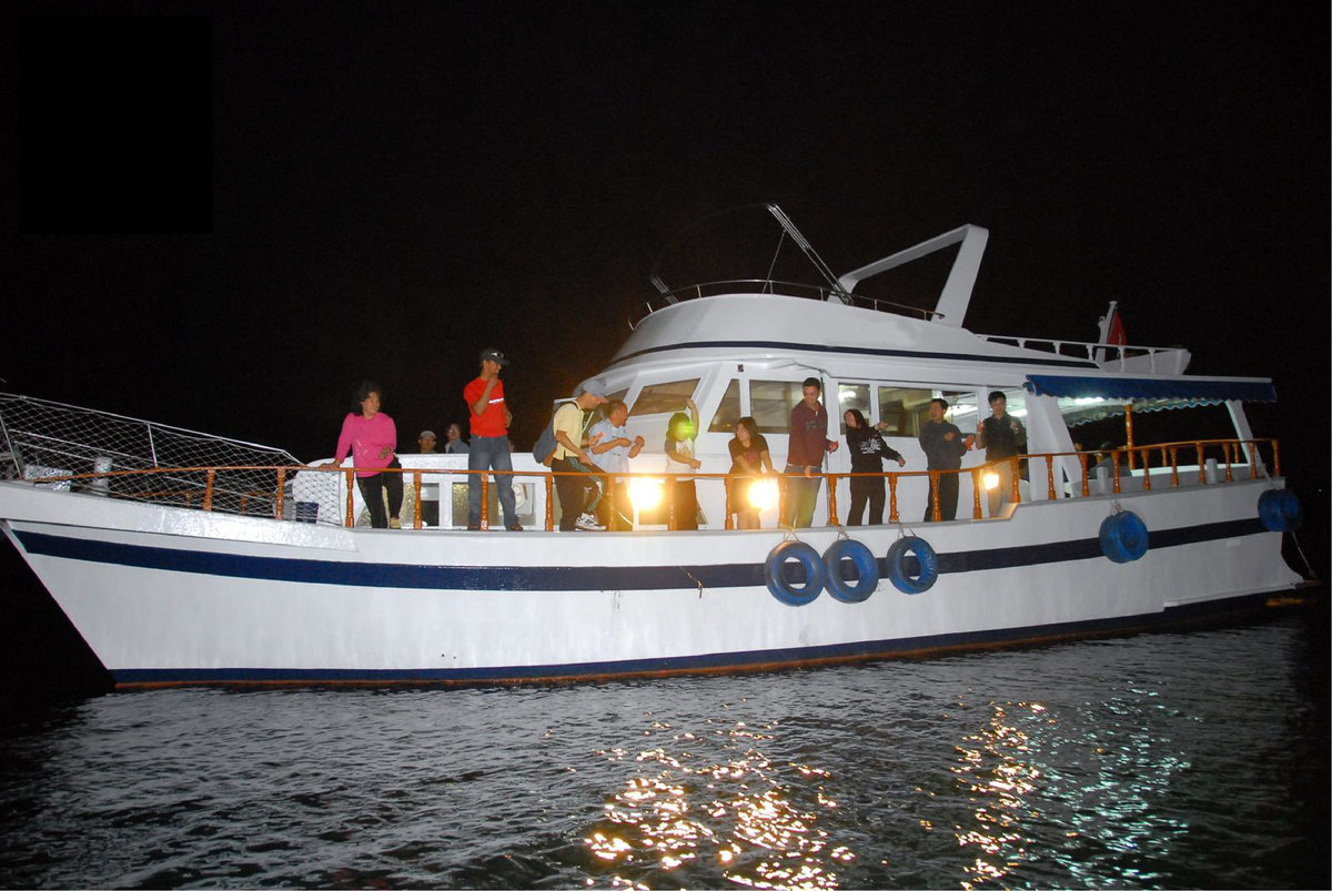 1 Pax (Same Price for Adult & Child) - Central and Western District Promenade Tour & Cuttlefish Fish