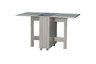 Wood Color with Grey Mirror Folding Table