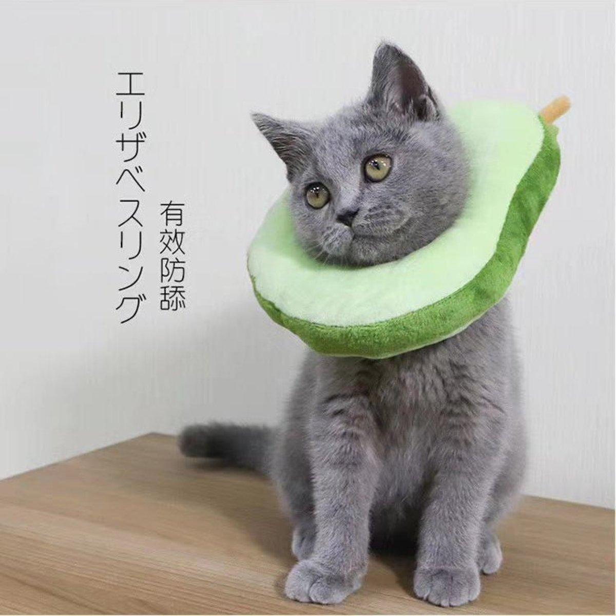 Anti-licking collar Elizabeth ring Shame ring-avocado shape Three Size (L)