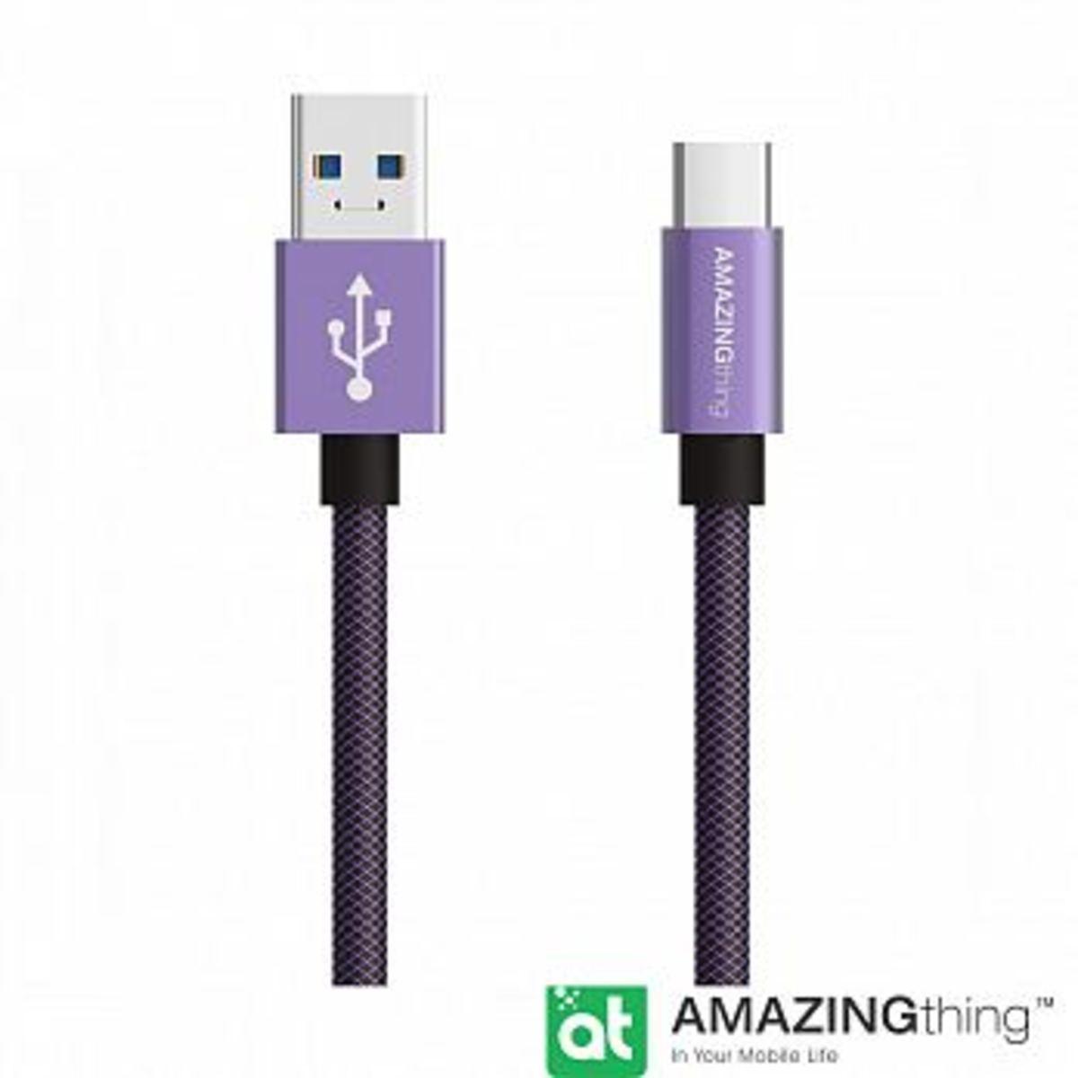 Type-C 3.1 1米 急速充電極耐用數據轉輸線(紫色)