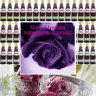 (UK)  Artisan Perfume - Rosa Ribes